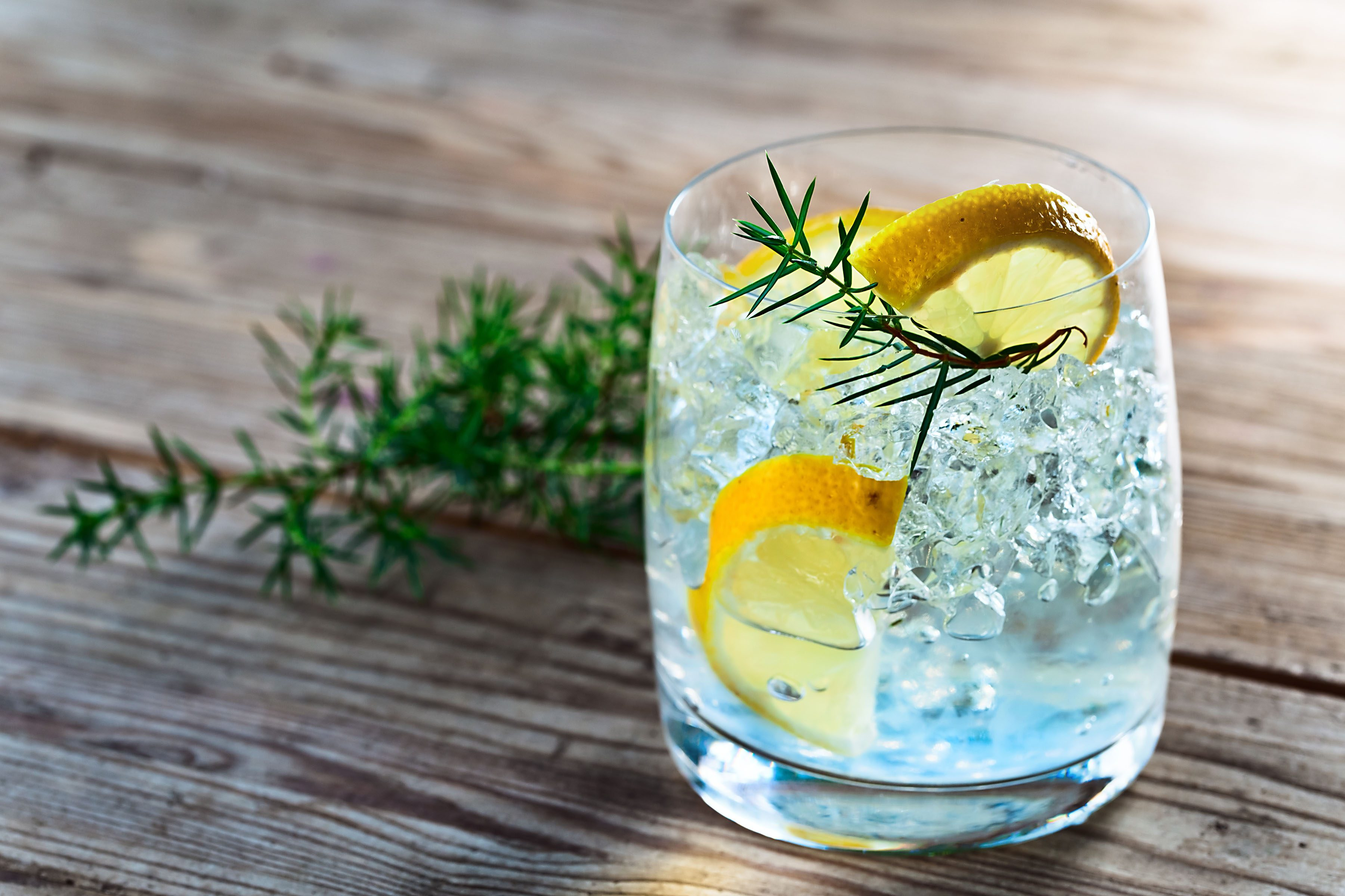 Gin cocktail for the summer for Best mixers for gin