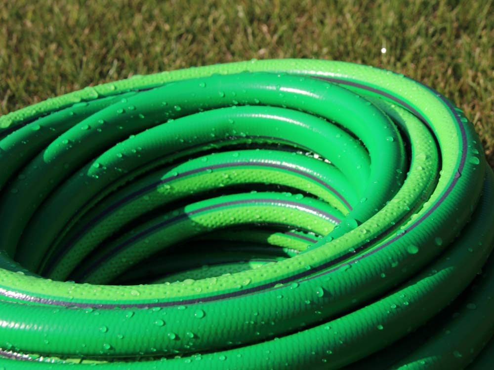 use garden hoses to scare birds - Garden Hose