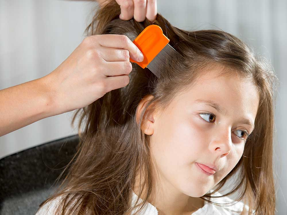 Use Mayonnaise - Little girl being checked for lice