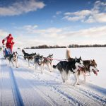 Canada's 18 Coolest Winter Travel Destinations