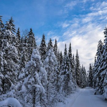 10 Reasons to Visit Quebec in the Winter