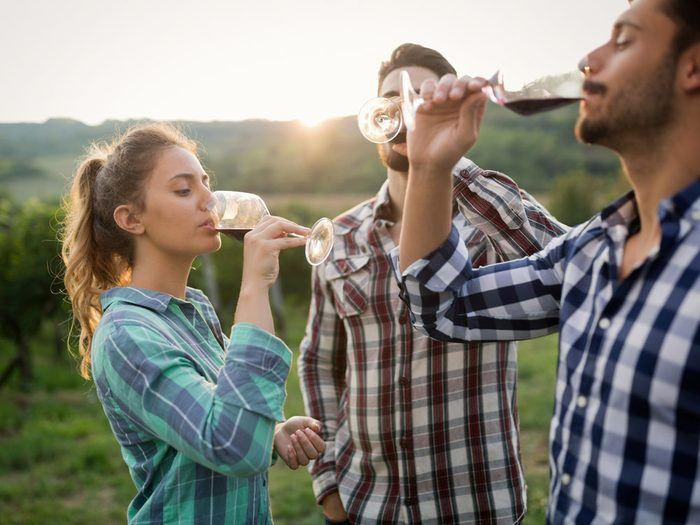 Friends tasting wine in vineyard