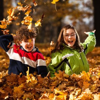 5 Simple Fall Activities for Families