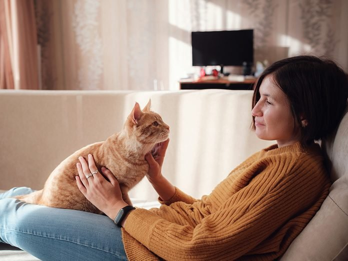 how-to-make-a-cat-love-you