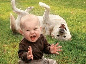 Baby photobombed by dog