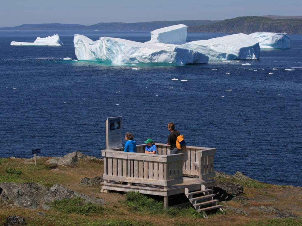 Iceberg viewing in Newfoundland