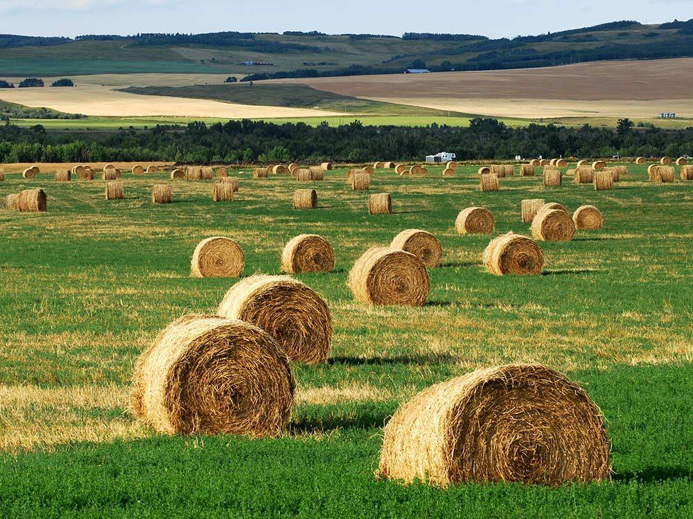Farm in rural Canada
