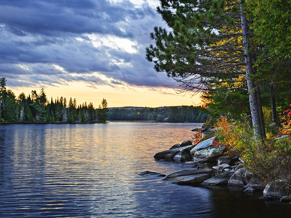 Algonquin provincial park is one of Canada's natural wonders