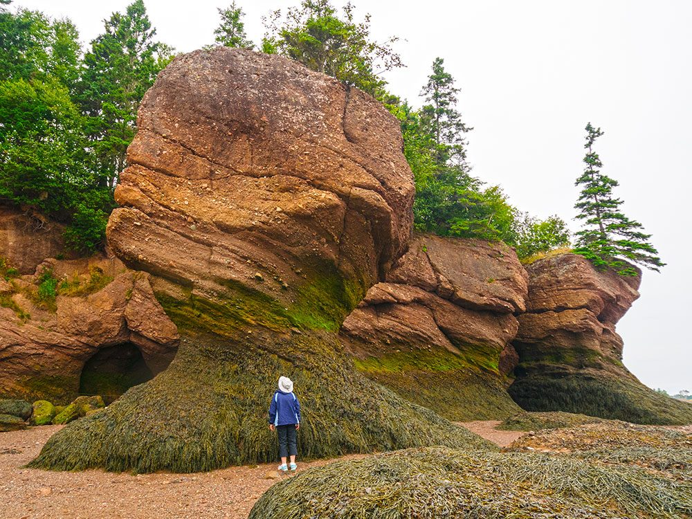 Hopewell Rocks are one of Canada's natural wonders