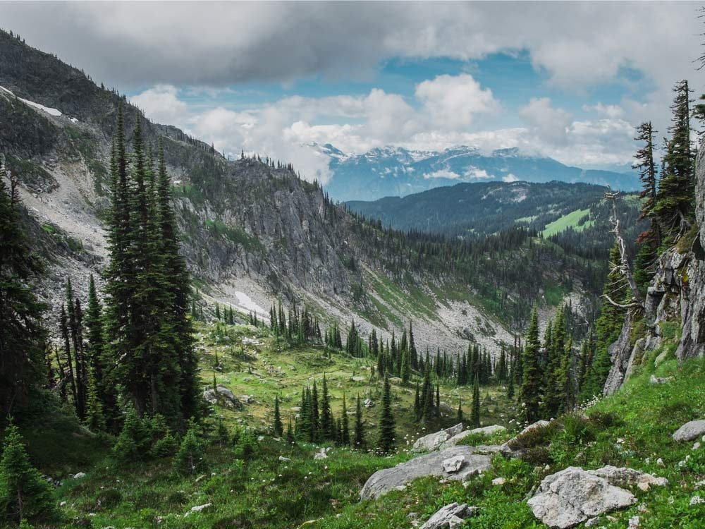 Mount Revelstoke National Park, British Columbia