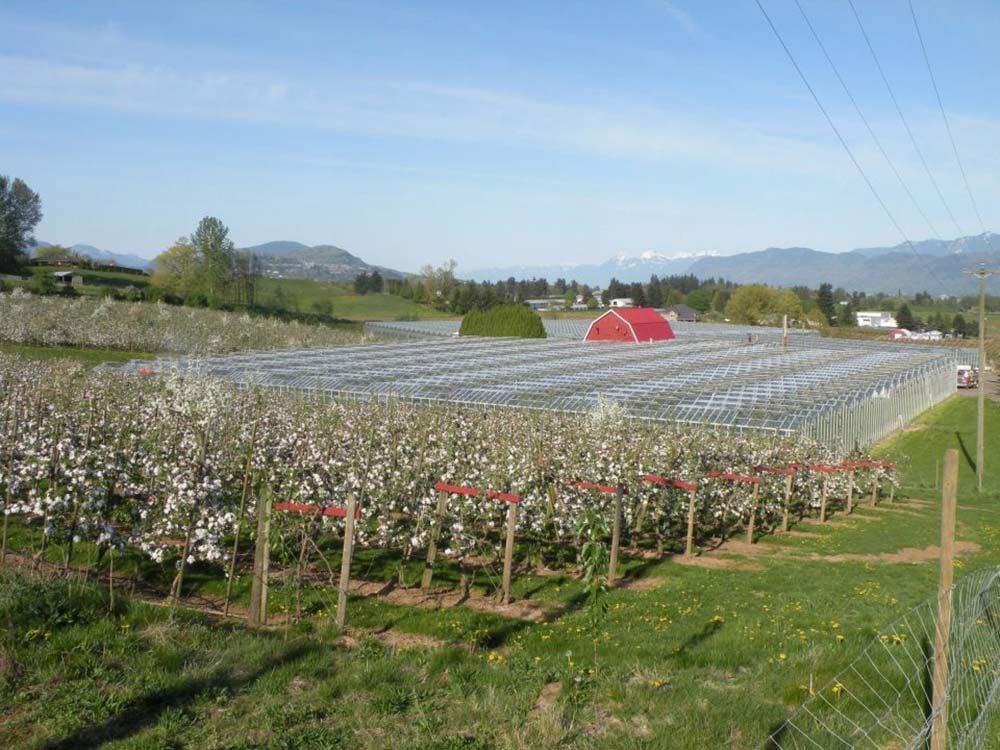 Taves Family Farm in British Columbia