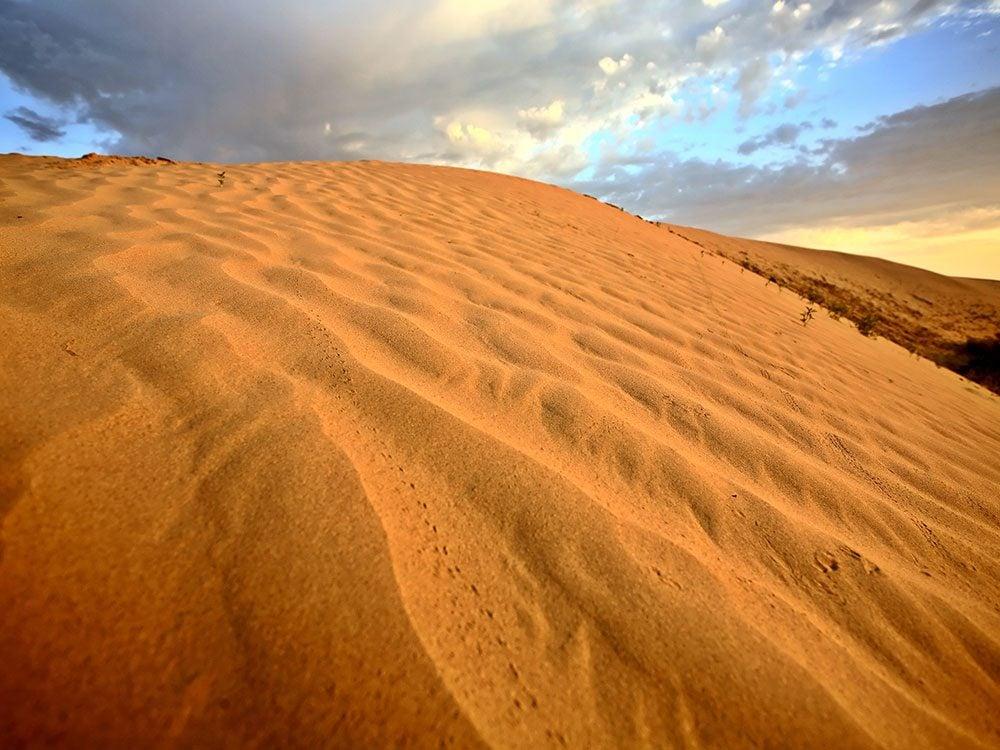 Great Sand Hills, Saskatchewan, Canada