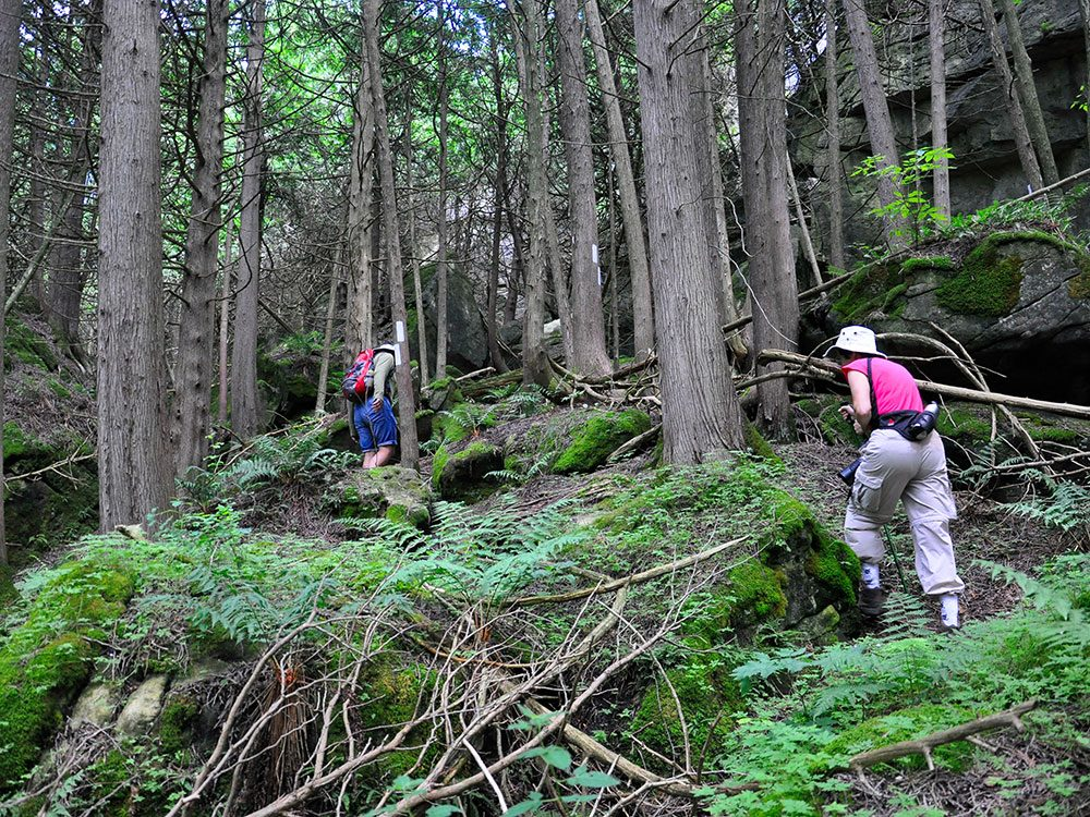 Hike the Bruce Trail in Ontario, Canada