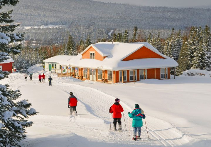 newfoundland-snow-west-canadian-winter-destinations