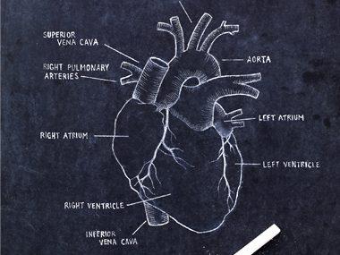 15 Ways to Prevent Heart Disease