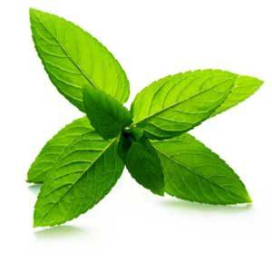 1. Grow Some Herbs