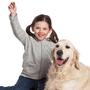8. Know Your Dog's History