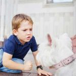 8 Ways to Keep Kids Safe from Dog Bites