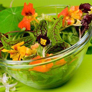 7 Edible Flowers