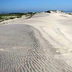 7. Pea Island National Wildlife Refuge