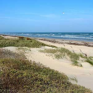 4. Padre Island National Seashore