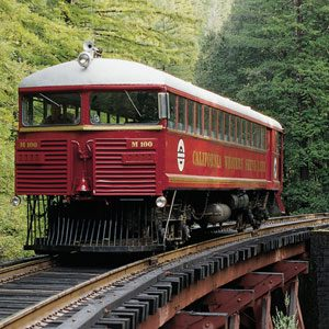 Amazing California: 1. Ride the Skunk Train