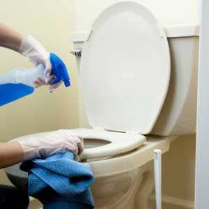 1. Make a Household Disinfectant Spray