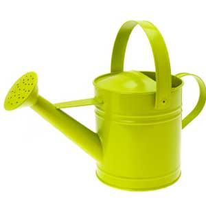 3. Make a Watering Can