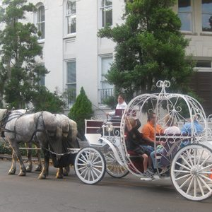 1. Take a Carriage, Trolley or Ghost Tour