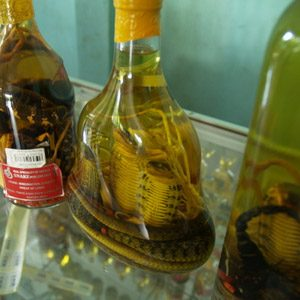 4. Liquor of Snake... or Scorpion? Or Perhaps a blend?