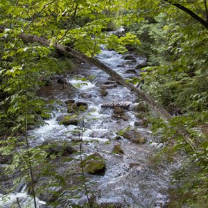 Beautiful Hiking Spots in Canada