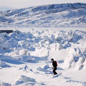 7. The Arctic