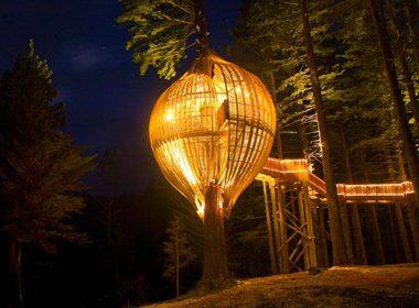 4. Redwoods Treehouse - Warkworth, New Zealand