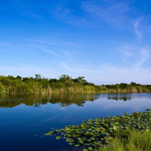 8. Everglades National Park, Florida, USA