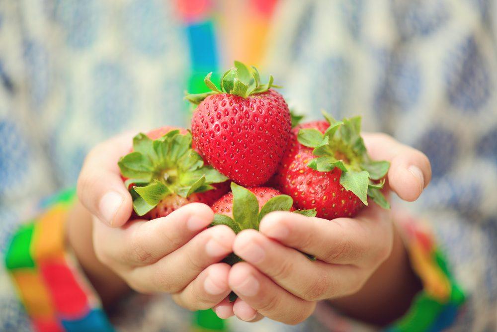 Buy Fresh Food!