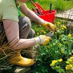9 Cheap and Easy Gardening Fixes