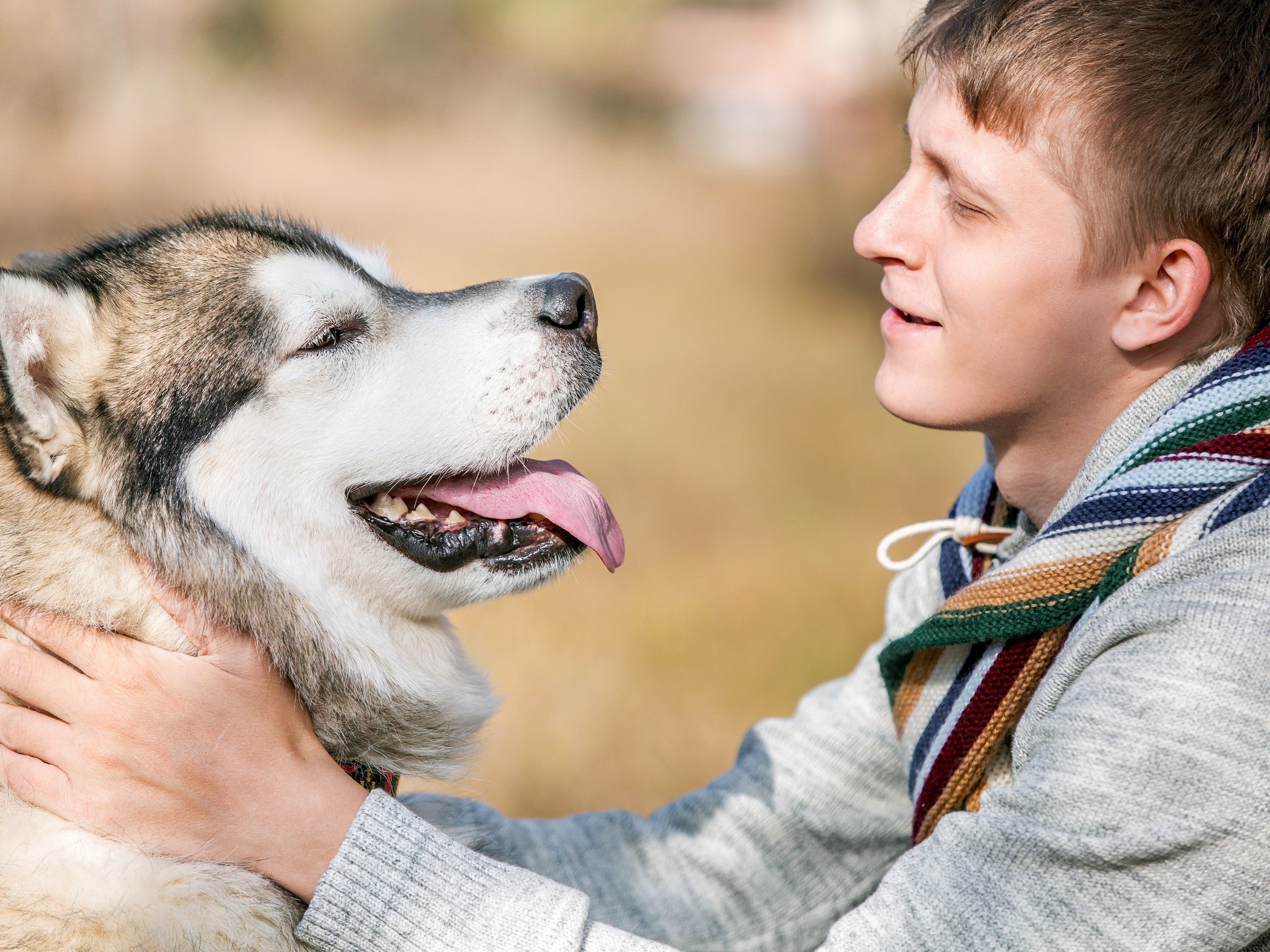10 Things To Know Before Getting A Dog