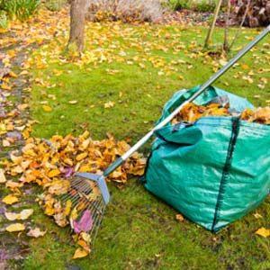 5. Hate Bagging Leaves?