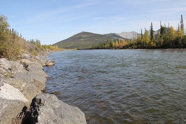 Ogilvie River