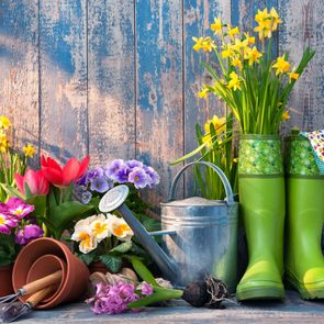 Brilliant gardening tips - gardening concept with rubber boots and watering can
