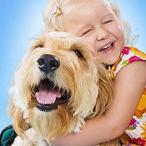 7 Amazing Hero Pets