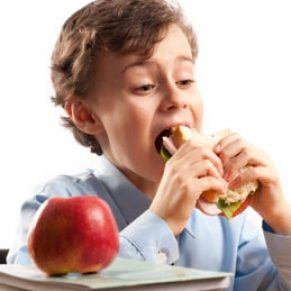 child eatng lunch at school