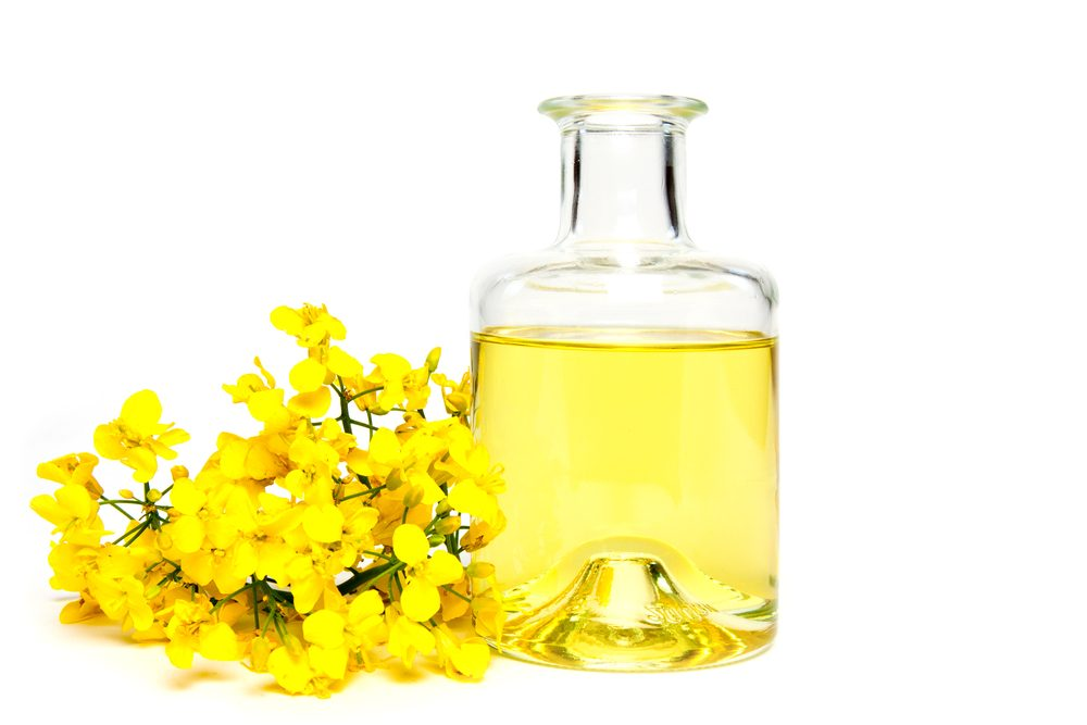 Opt For Canola Oil Instead of Vegetable Oil