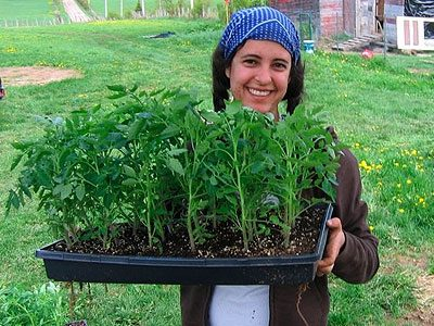1. Willing Workers on Organic Farms (WWOOF), International