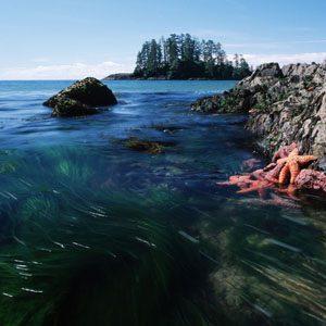 Vancouver Islands, Canada