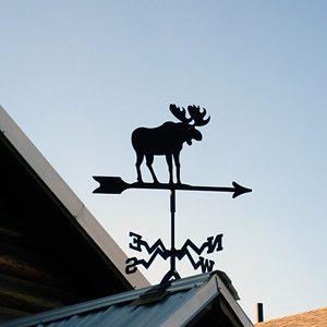 2. Moose Dropping Festival