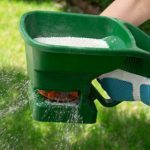 7 Secrets for a Greener Lawn