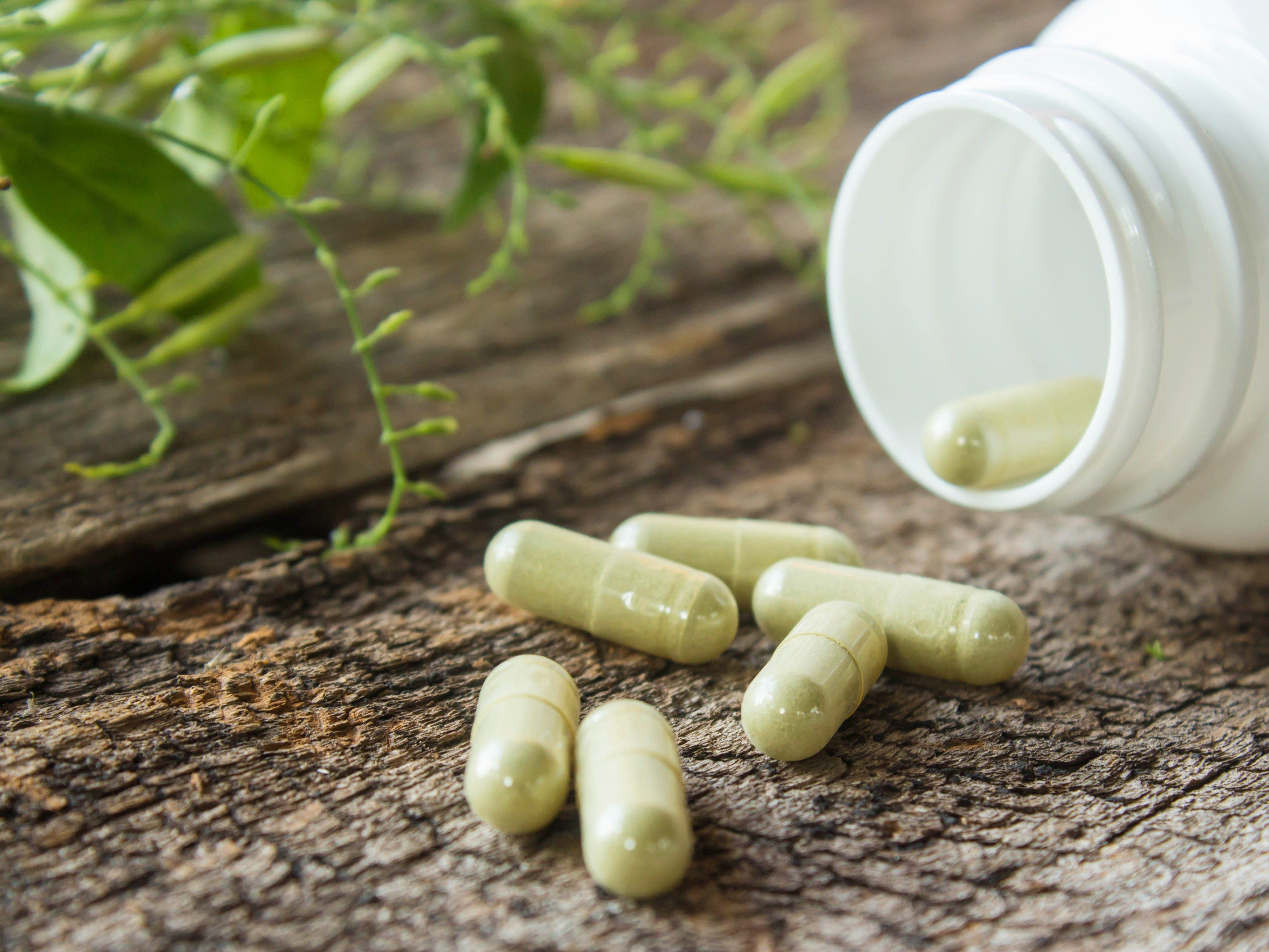 Organic supplements for muscle growth