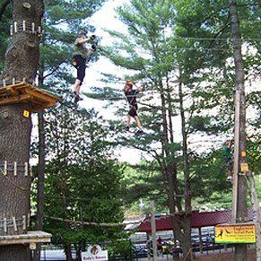 2. Treetop and Zip-Line Adventures