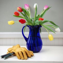 3. Make Cut Flowers Last Longer